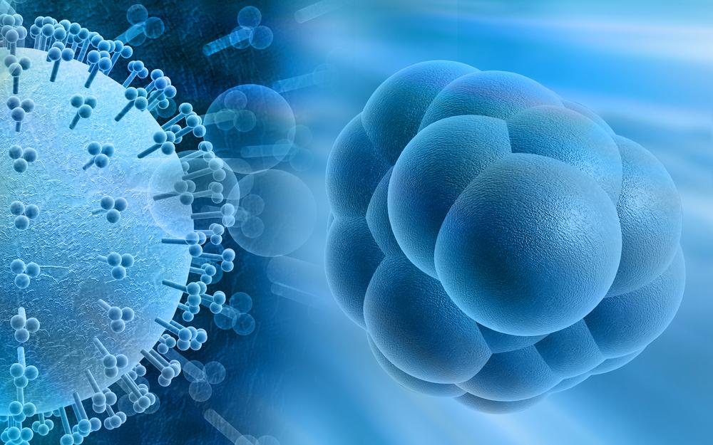 Положительный анализ на anticmvigg при беременности