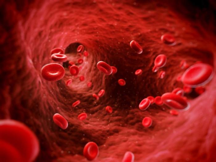 globulos-rojos1-700x525